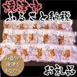 【ふるさと納税】001-372 オーガニックfood「ネコちゃんごはんセット」