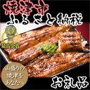 【うなぎ】【ふるさと納税】353-089 最高金賞「駿河大五郎」2尾