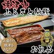 【うなぎ】【ふるさと納税】002-261 最高金賞蒲焼ハーフカット2種+焼津白醤油焼きセット