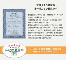 【ふるさと納税】有機JAS・JGAP認証オーガニック野菜3回お届け定期便