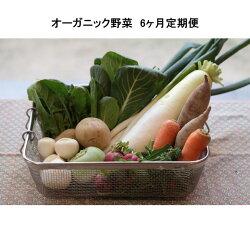 しあわせ野菜かご入り野菜