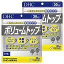 【ふるさと納税】DHCボリュームトップ30日分2個セット