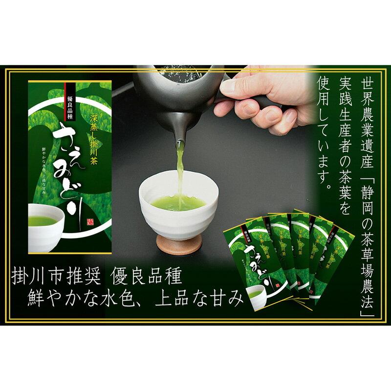 【ふるさと納税】稀少品種深蒸し掛川茶 「さえみどり」