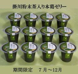 【ふるさと納税】掛川粉末茶入り本葛ゼリー7月〜12月