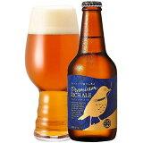 【ふるさと納税】DHCプレミアムリッチエール 330ml×6本セット【お酒 ビール】