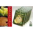【ふるさと納税】静岡クラウンメロンカレー5箱入り 【加工食品・惣菜・レトルト】
