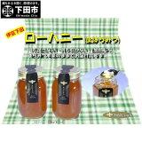 【ふるさと納税】ローハニー600g×2本セット蜂蜜ハチミツ送料無料