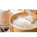 【ふるさと納税】農家のつくったおいしいお米 コシヒカリ 10kg 【お米・コシヒカリ】