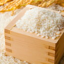【ふるさと納税】農家のつくったおいしいお米 にこまる【食味ランキング「特A」品種】 10kg 【米/