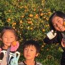 【ふるさと納税】【年内発送】青島みかん約10kg〔鈴木農園〕Mサイズ 約100個 【果物類・柑橘類・みかん・フルーツ】 お届け:2020年12月20日〜2020年12月26日
