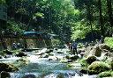【ふるさと納税】A-17 日本の滝100選、浄蓮の滝を望む釣り体験!!あまご釣りに挑戦!!渓流釣り体験チケット(2名様)
