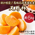 【ふるさと納税】010-013 秋の味覚!菊地元治農園の天野柿(約5kg)