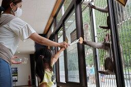 【ふるさと納税】波勝崎モンキーベイ ペア入場券 動物園