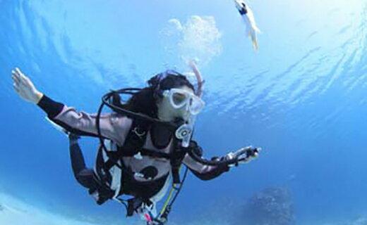 【ふるさと納税】田子シーランドのカップル!親子!2名で体験ダイビング!