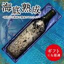 【ふるさと納税】海底熟成ワインVOYAGE【カサーレ・ヴェッ