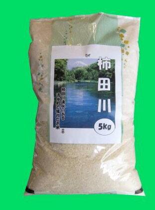 お米「あいちの香」40キロ