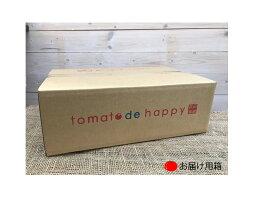 【ふるさと納税】甘さ抜群!!トマト嫌いも食べられるトマトベリー約1.8kg