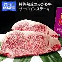 【ふるさと納税】特許熟成のみかわ牛サーロインステーキ H050-002