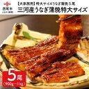 【ふるさと納税】K126.【大家族用】愛知三河産のうなぎ蒲焼