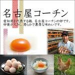 【ふるさと納税】日本三大地鶏!!本当に美味しい食べ物は調味料の味に負けません!「純系名古屋コーチンの卵」(30個)