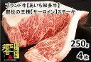【ふるさと納税】高級4等級使用!! 【サーロインステーキ】250g4枚 『知多牛』生肉で送ります!!※北海道・沖縄・離島の方は量が異なりますので、下記内容量欄で確認してください。