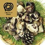 【ふるさと納税】マルヨシ水産桑名産中粒天然蛤1.0kg