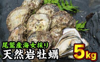 海女採り 尾鷲産天然岩牡蠣(いわがき) 大容量5kgセット(カキ平均サイズ約400g)