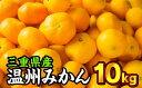 II-12 三重県産 温州みかん10kg(家庭用)《先行予約...