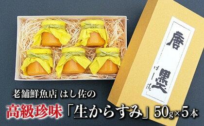 HA-16 老舗鮮魚店 はし佐の高級珍味「生からすみ」50g×5本