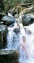 【ふるさと納税】N-12滝打ち修行体験 宿泊プラン