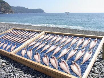 【ふるさと納税】海の恵み 干物詰め合わせA