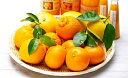 【ふるさと納税】自然塾 季節の柑橘詰合せ【1回】