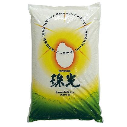 2017年産 鳥羽志摩地域特産 特別栽培米 珠光10Kg