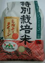 【ふるさと納税】特別栽培米ミルキークイーン10kg...
