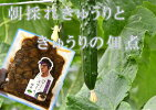 【ふるさと納税】I69朝採れきゅうりときゅうりの佃煮