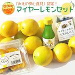 AA15-Gたかみ農園マイヤーレモンセット