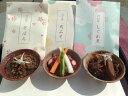 【ふるさと納税】A24 近江牛しぐれ・そぼろ・肉味噌セット