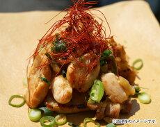 【ふるさと納税】No.107超新鮮!焼くだけで超美味しい!淡海地鶏ねぎ塩