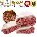 【ふるさと納税】近江牛ステーキ塊「かたまり」約10kg