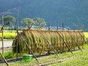 【ふるさと納税】特別栽培米コシヒカリ 北びわこプレミア米 18kg