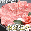 【ふるさと納税】【4等級以上の未経産牝牛限定】近江牛カルビ焼肉【600g】