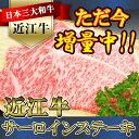 【ふるさと納税】近江牛ステーキ 2枚 N006