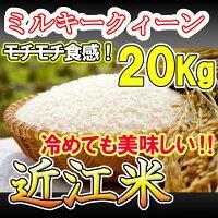 V999食味鑑定士が生産した近江米ミルキークィーン白米10kg