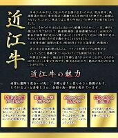 彦根藩発祥「養老の秘薬」近江牛味噌漬