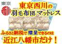 【ふるさと納税】健圧敷きふとん/ハードタイプ/シングル/ベー...