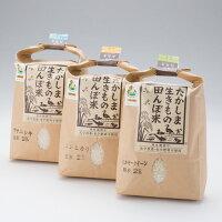 【ふるさと納税】【T-501】グリーン藤栄生きもの田んぼ米食べ比べセットA