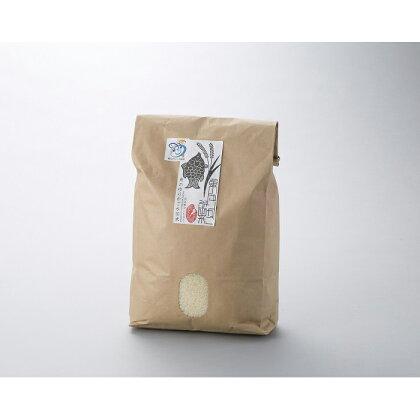 環境こだわり米 魚のゆりかご水田米〈コシヒカリ 10kg〉 [ 高島屋選定品 ] (提供)JAグリーン近江ファーマーズきてか〜な