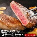 【ふるさと納税】近江牛A5ランクステーキセット(サーロイン・ヒレ)【納期1〜2カ月】 【牛肉・お肉】