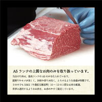 【ふるさと納税】【訳あり】黒毛和牛ハンバーグ11個A5ランク手作り簡易包装