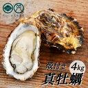 【ふるさと納税】殻付き 養殖 真牡蠣 4kg 加熱用 朝どれ直送!1月より順次発送